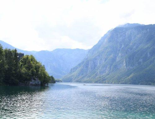 Presoje vplivov na vodna telesa po Okvirni vodni direktivi