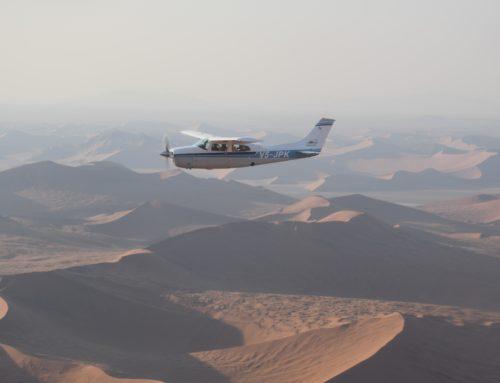 Dostop do informacij v zadevah Pilot v praksi