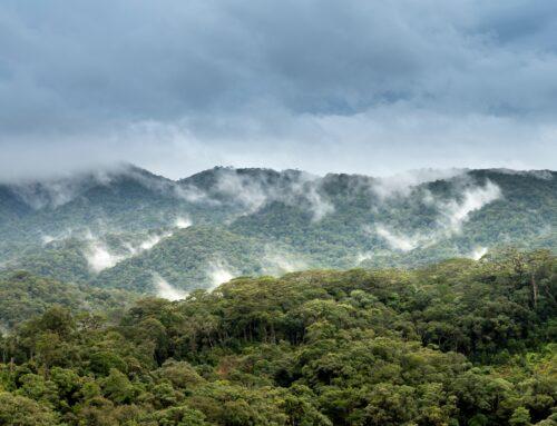 Biodiverziteta & podnebne spremembe