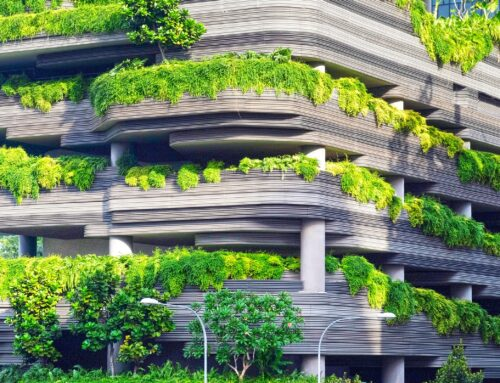 Nature-based Solutions  ali »Rešitve ki temeljijo na naravi«