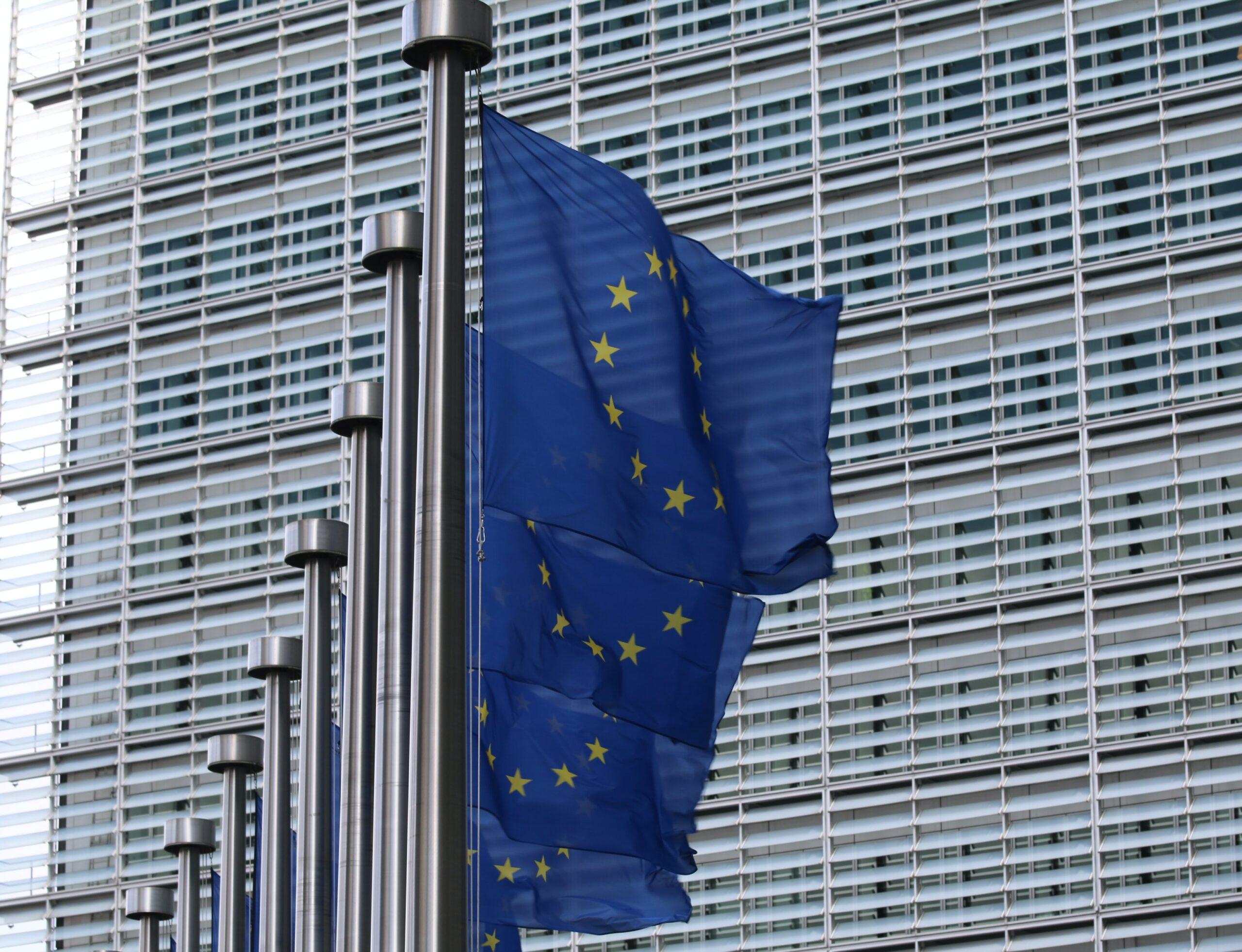 Varuhinja človekovih pravic EU – pomembno stališče glede sodelovanja javnosti
